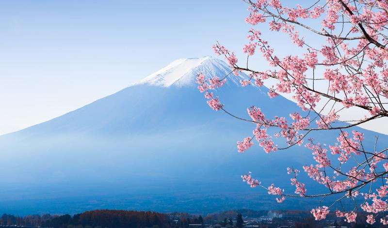 日本留遊學-在日與日商公司求職上更加分